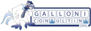 Galloni Consulting Srl